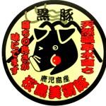 桜島美湯豚